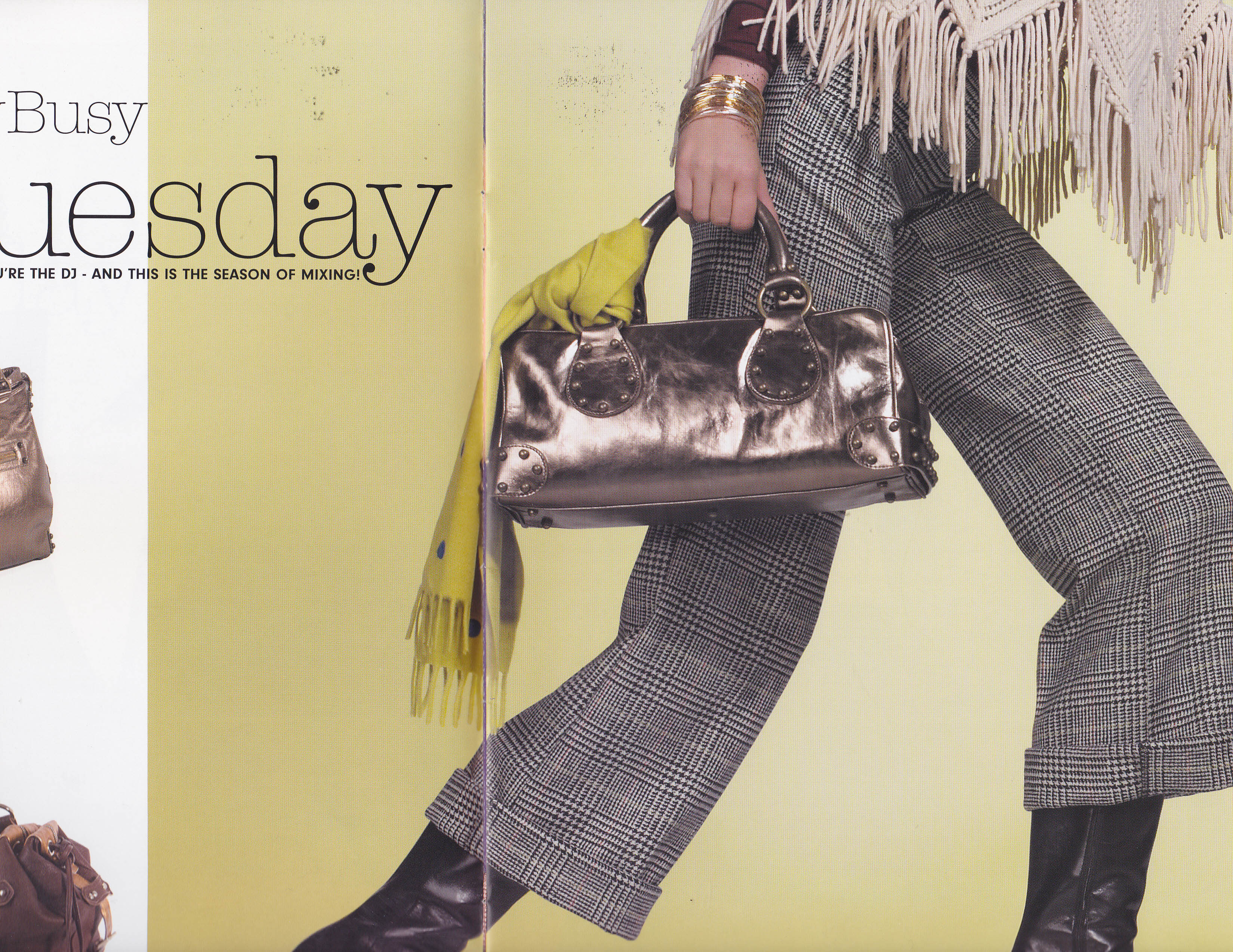 Fall Searle Magazine